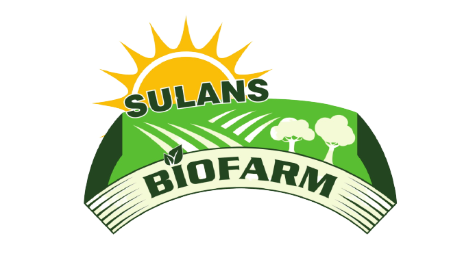 sulans-removebg-preview.png
