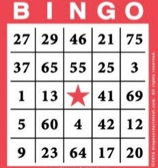 Designer Bag Bingo Add-on Player Packet