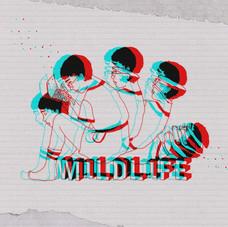 M1LDL1FE - M1LDL1FE