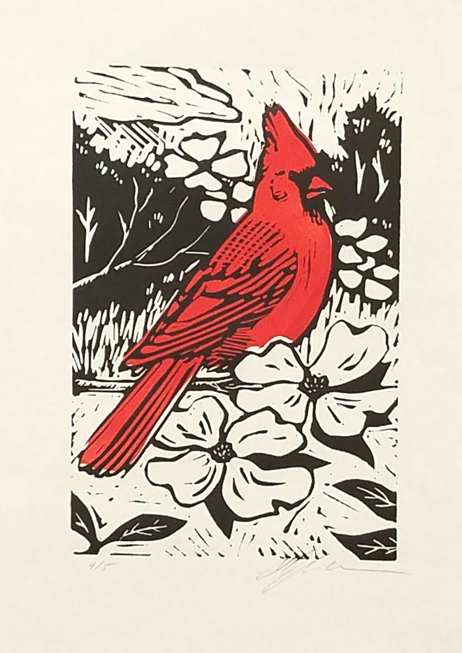Cardinal_1