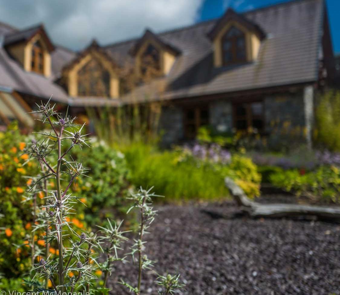 Shane Murphy, Lavender Landscapes