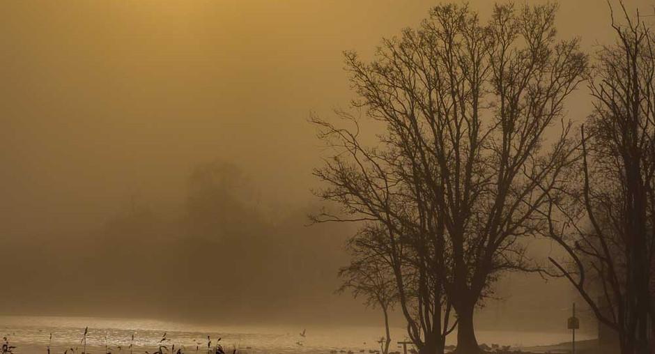Autumn Sunrise over Lough Muckno