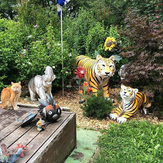 Tigres de Mme.jpg