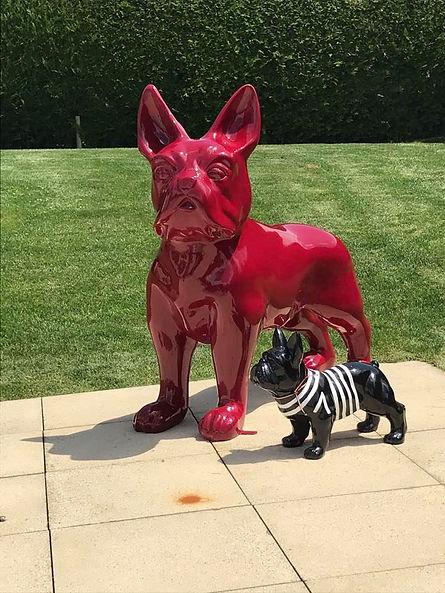 Dog rouge Epalinges.jpg
