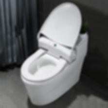 Автоматизироанные системы одноразовых покрытий для унитазов Pro Comfort 31