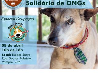 Feirinha Solidária de ONGs - Especial Ocupação DIÁRIO DE UMA MOCINHA