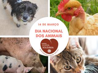 14 de março - Dia Nacional dos Animais