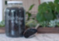black_beans.jpg