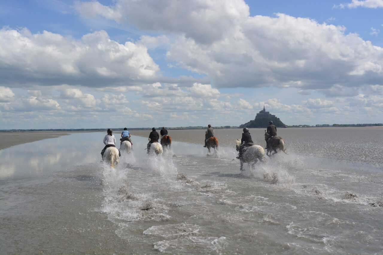 Normandy Guided Tours | Hoorseriding