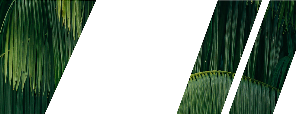 OGIO Banners-02.png
