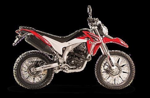 TXR-250-L-color-rojo.png