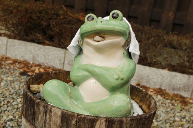 カエル 温泉 ゆでガエル 風呂