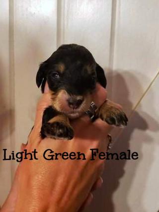 light green female edit.jpg