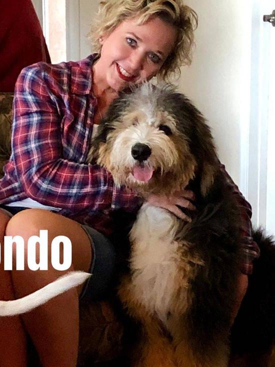 Hondo (F1)