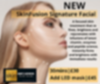 SkinFusion Signature Facial