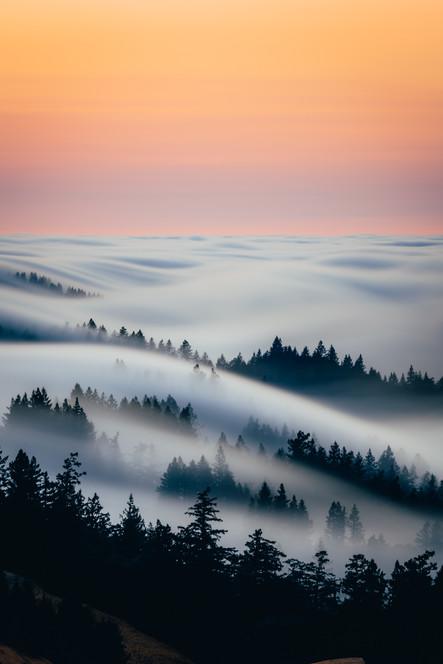 fogwaves-2.jpg