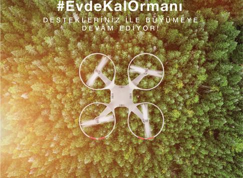 Türkiye'nin ilk EvdeKal Ormanı Teknoloji ile Kuruluyor