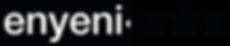 Enyeni Online Logo