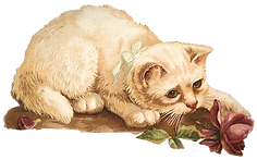 free-vintage-cat-clip-art-white-with-pin