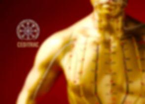 imagem_capa_site_ceditrac1.jpg