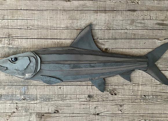 Bonefish 29, 3/5
