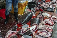 wuhan wet market.jpg
