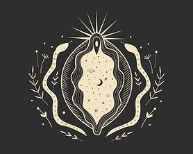 Image of Vulva Illustration.
