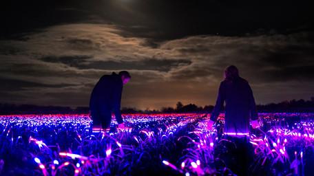 Grow, il light design a favore dell'agricoltura