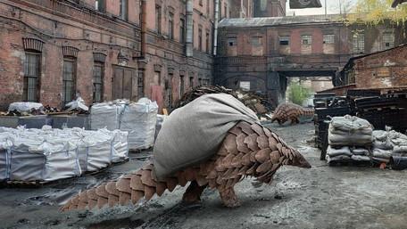 Le creature straordinarie di Vadim Solovyov