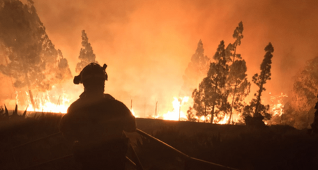 L'Amazzonia, la Siberia, le Canarie e l'Indonesia bruciano