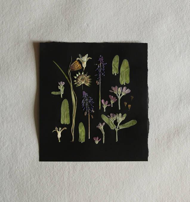 Pressed flower piece