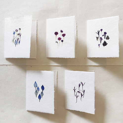 Small pressed flower cards