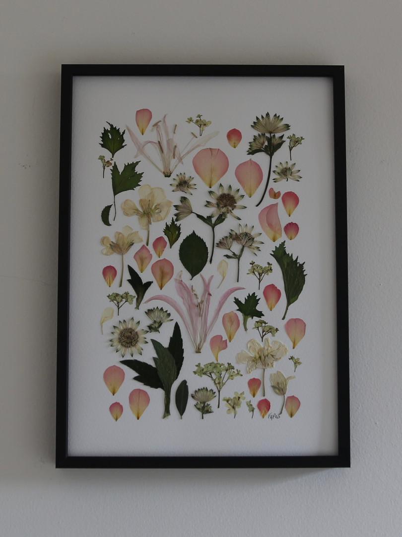 Pink nerines, astrantia, rose petals, gelda and stock flowers