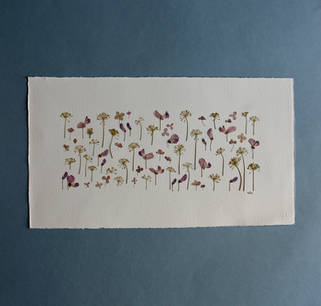 Wild Sweet Pea, Dill and Paniculata Hydrangea