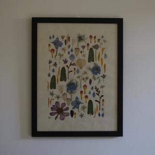 Oxypetalum, dahlia, delphinium, crocosmia and nigella flowers