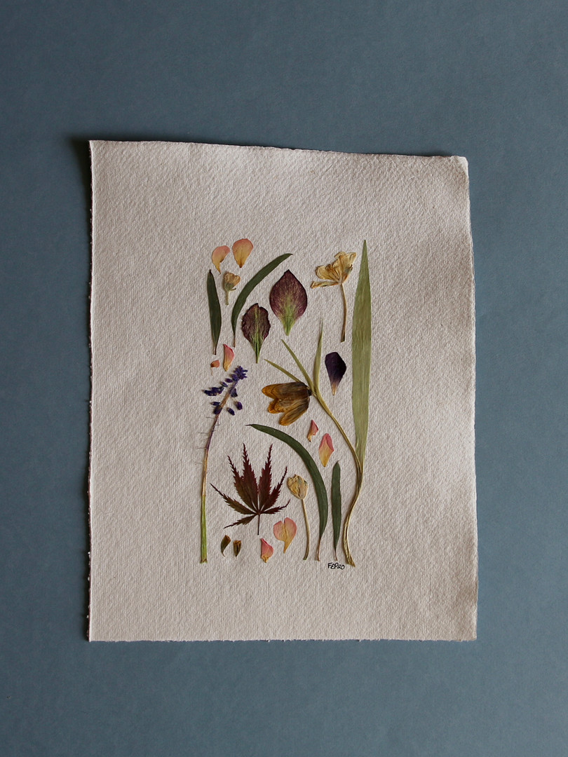 Maple, Mascari and Fritillaria Petals