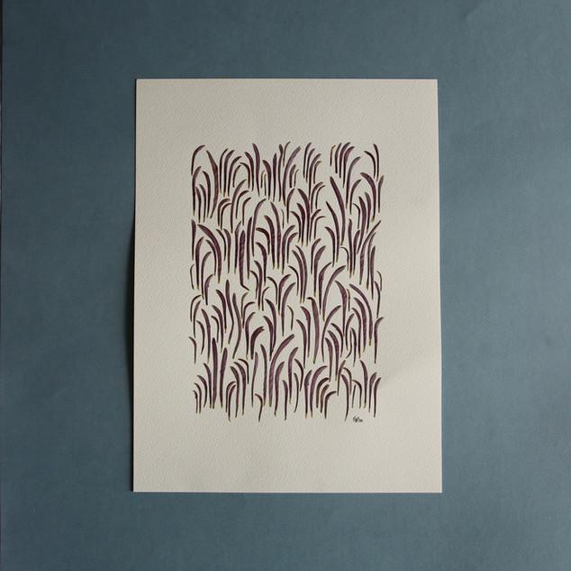 Purple chrysanthemum petals