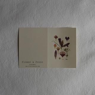 Fritillary, astrantia and rose petal