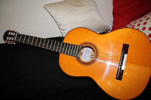 Guitare flamenca Amalio Burguet 1 FB