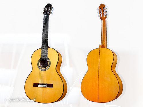 Guitare Flamenca Amalio Burguet 2F