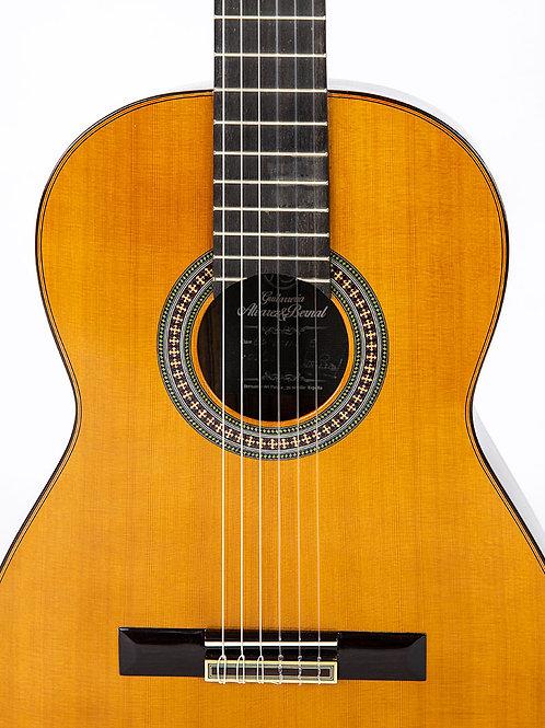 Guitare flamenca  Antonio Alvarez Bernal Especial 5