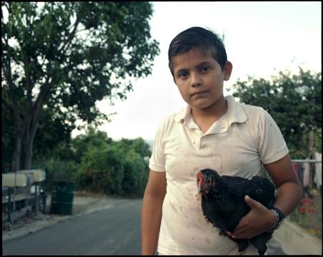 boy with chicken.jpg