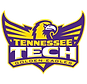 Tennessee_Tech_Golden_Eagles_logo.svg.pn