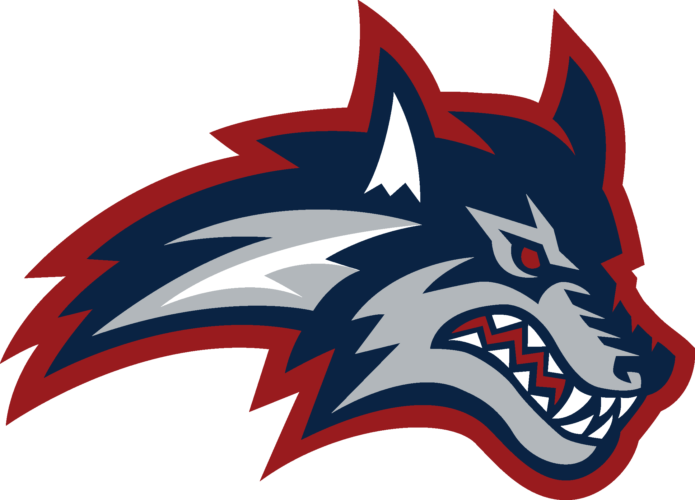 Stony_Brook_Athletics_Primary_Logo
