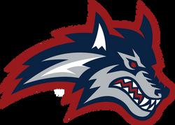 Stony_Brook_Athletics_Primary_Logo