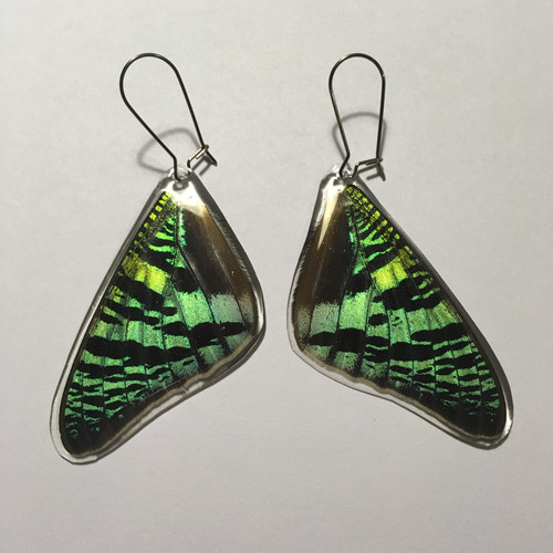 e9e1f775002afb insectsy | Butterfly Jewelry