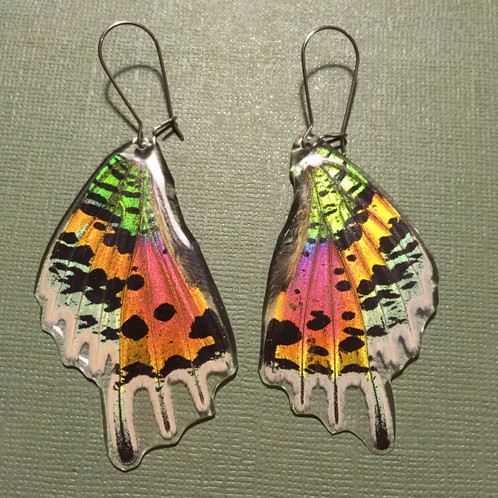 aedb4279f103b1 Rainbow Sunset Moth Earrings. $ 40.00. These flashy babes are our most  popular earrings! Encased in jewelers grade resin, these shimmery  iridescent wings ...