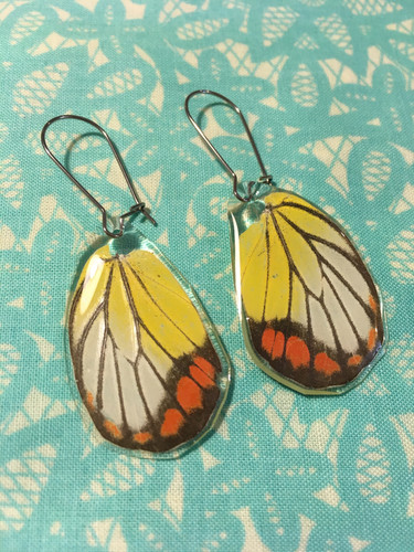 3b7f44a7041b36 Yellow and Orange Citrus Butterfly Wing Earrings