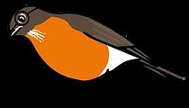 3586-Robin-Character-Poses-5-reading_25_