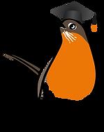 3586-Robin-Character-Poses-5_19.png